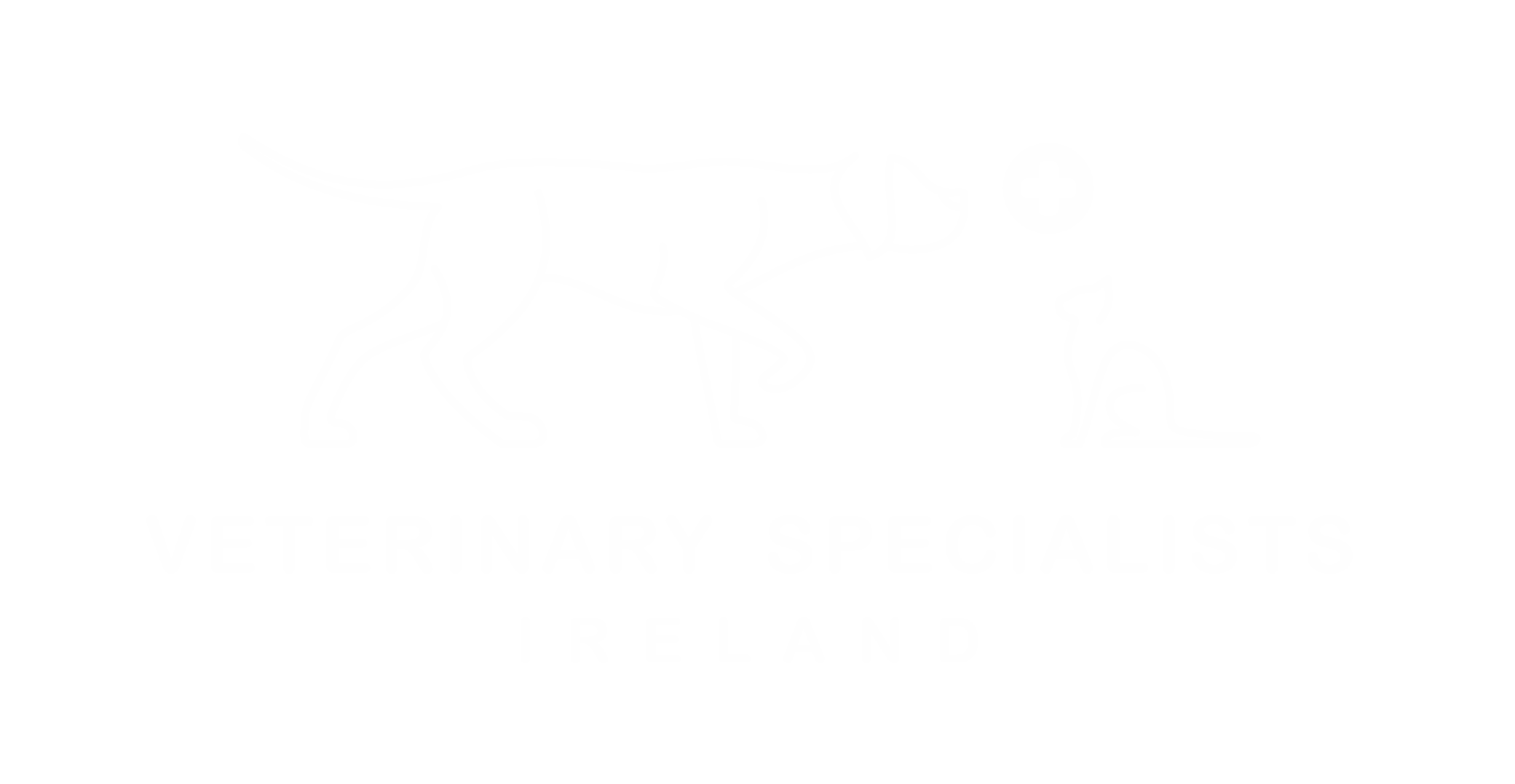 Veterinary Specialists Ireland